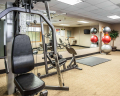 Quality Inn & Suites Seattle C